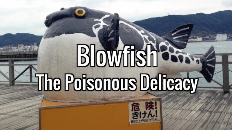Blowfish: The Poisonous Delicacy